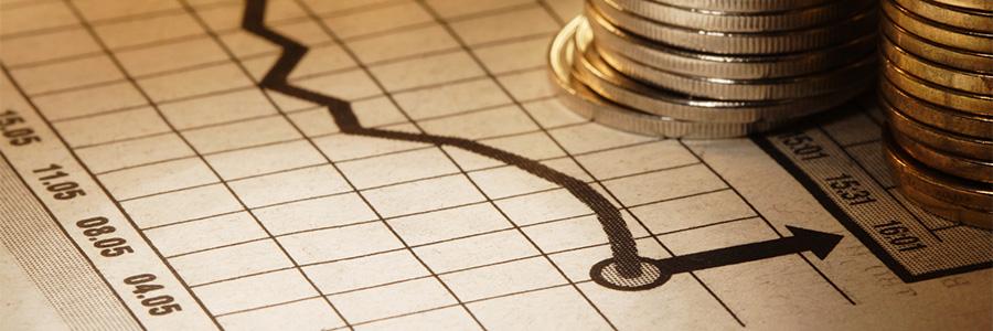 2016'da Ekonomi Nasıldı?