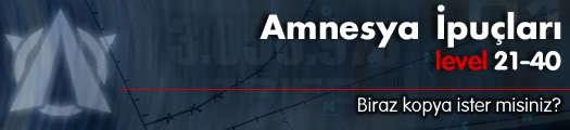 Amnesya İpuçları – Level 21-40