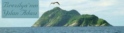 Brezilya'nın Yılan Adası