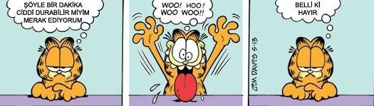 Garfield karikatürü