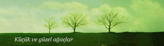 Küçük ve güzel ağaçlar