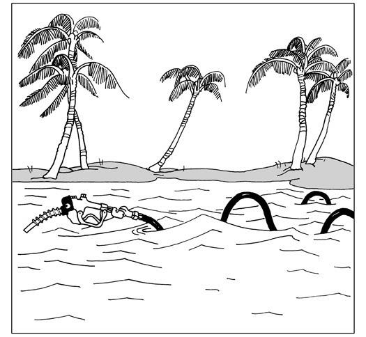 Meksika Körfezi'ndeki facia ilk değildi