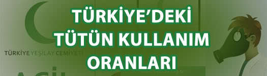 Türkiye'deki tütün kullanım oranları