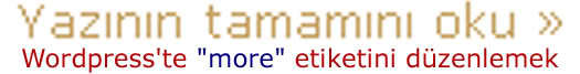 "WordPress'te ""more"" etiketini düzenlemek"