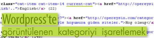 WordPress'te görüntülenen kategoriyi işaretlemek